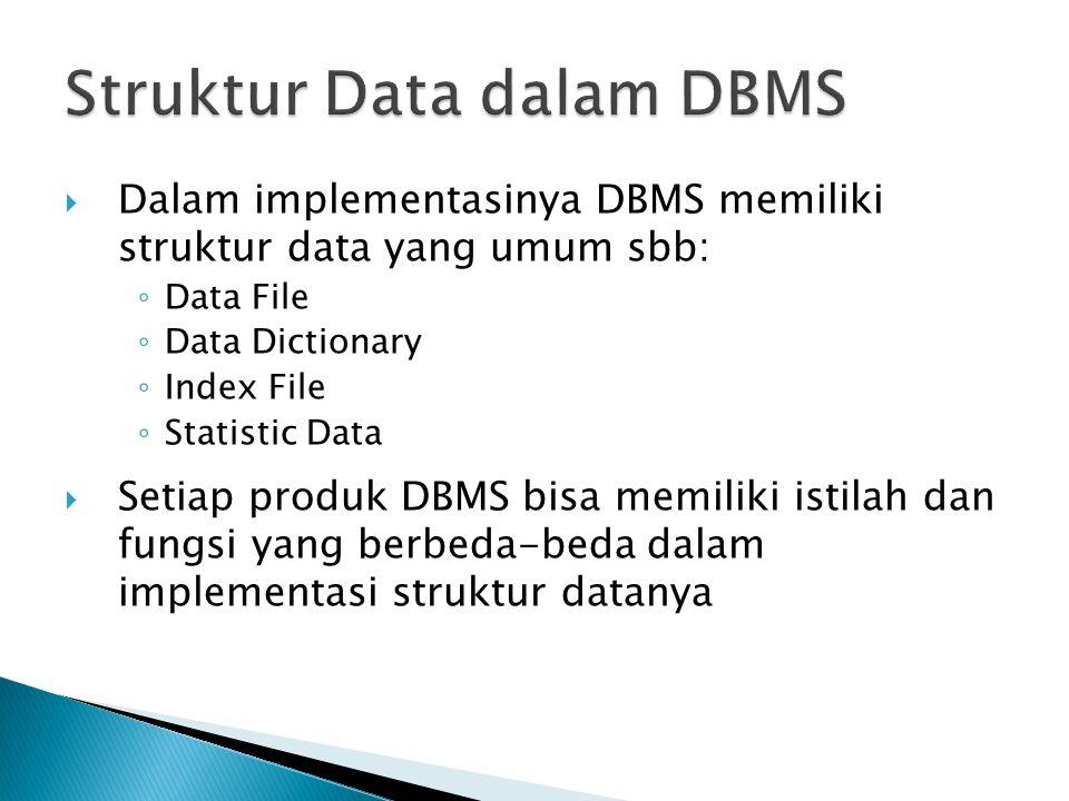 Struktur Data dalam DBMS