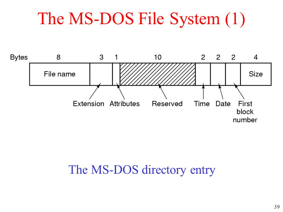 The MS-DOS File System (1)