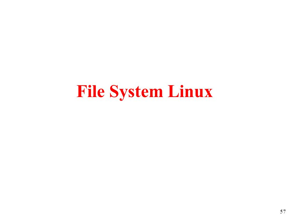 File System Linux