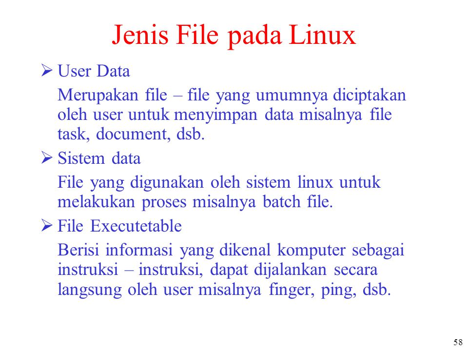 Jenis File pada Linux User Data