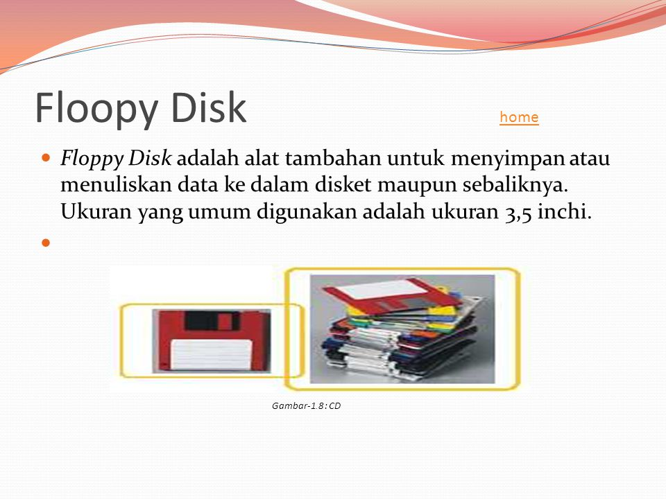 Floopy Disk home