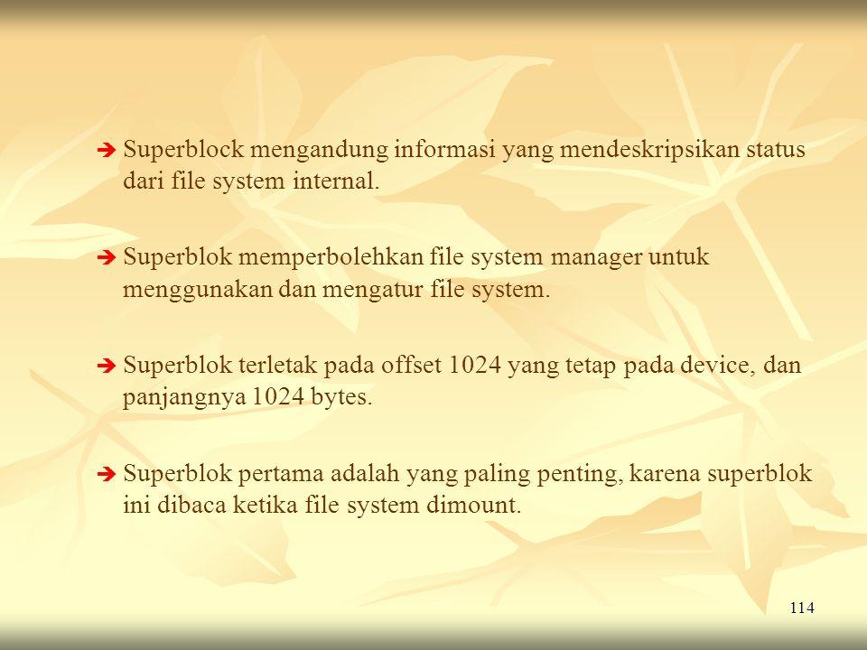 Superblock mengandung informasi yang mendeskripsikan status dari file system internal.