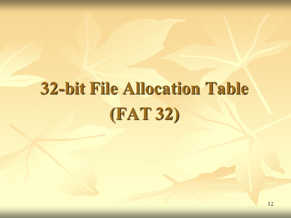32-bit File Allocation Table (FAT 32)