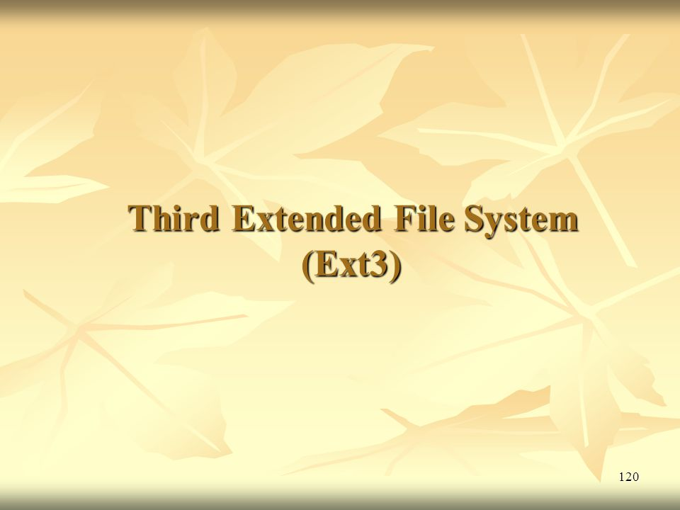 Third Extended File System (Ext3)
