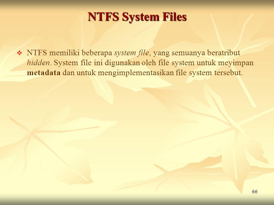 NTFS System Files