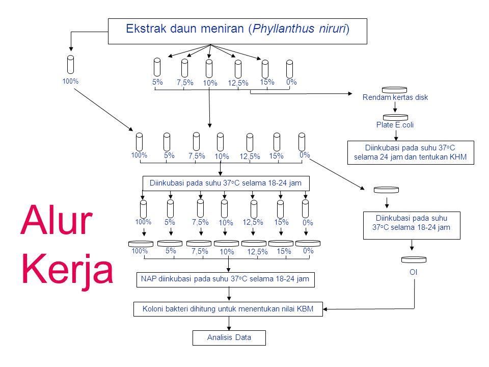 Alur Kerja Ekstrak daun meniran (Phyllanthus niruri) 5% 7,5% 10% 12,5%