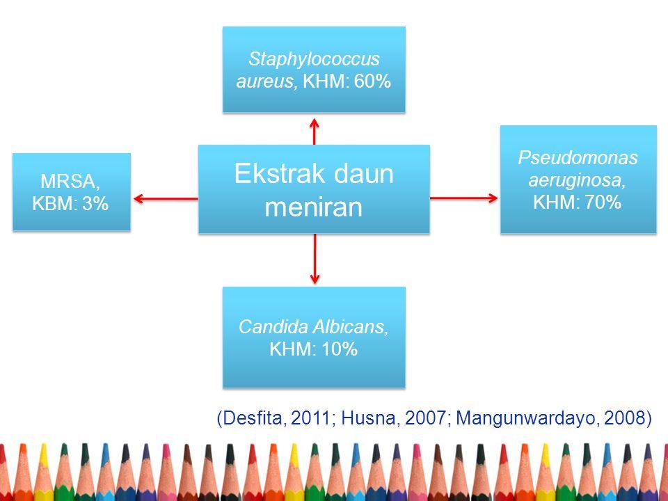 Ekstrak daun meniran Staphylococcus aureus, KHM: 60%