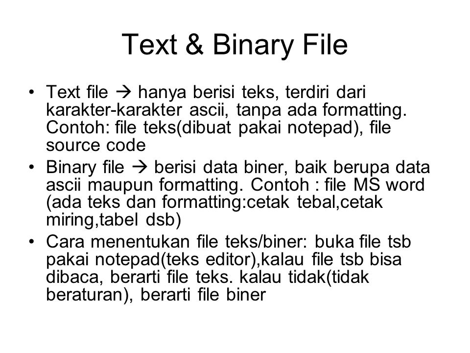 Text & Binary File