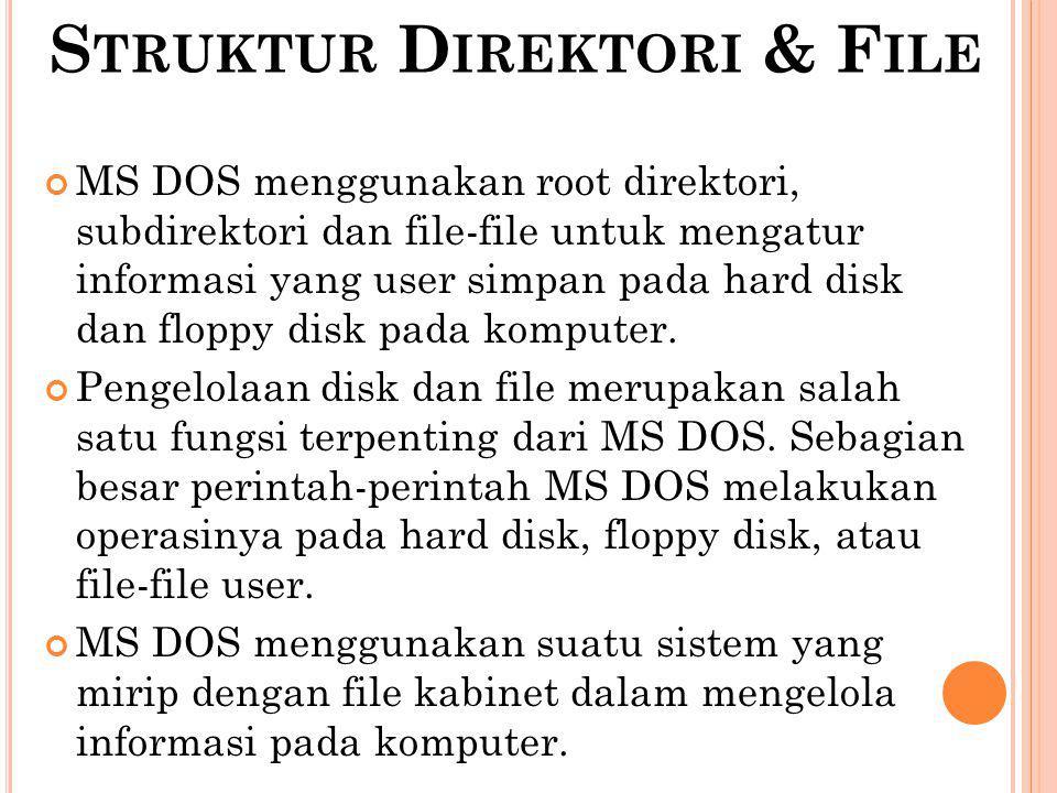 Struktur Direktori & File
