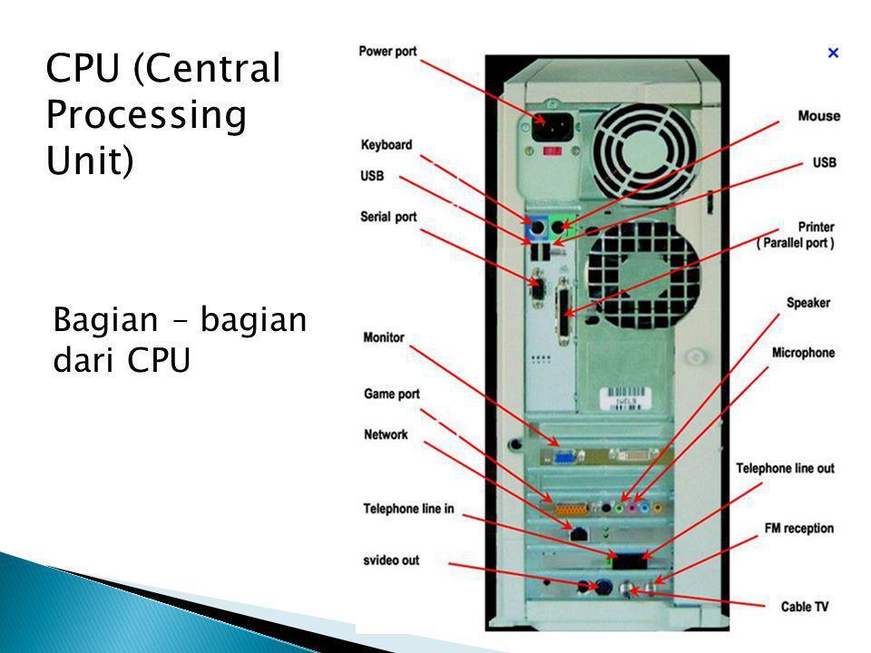 CPU (Central Processing Unit)