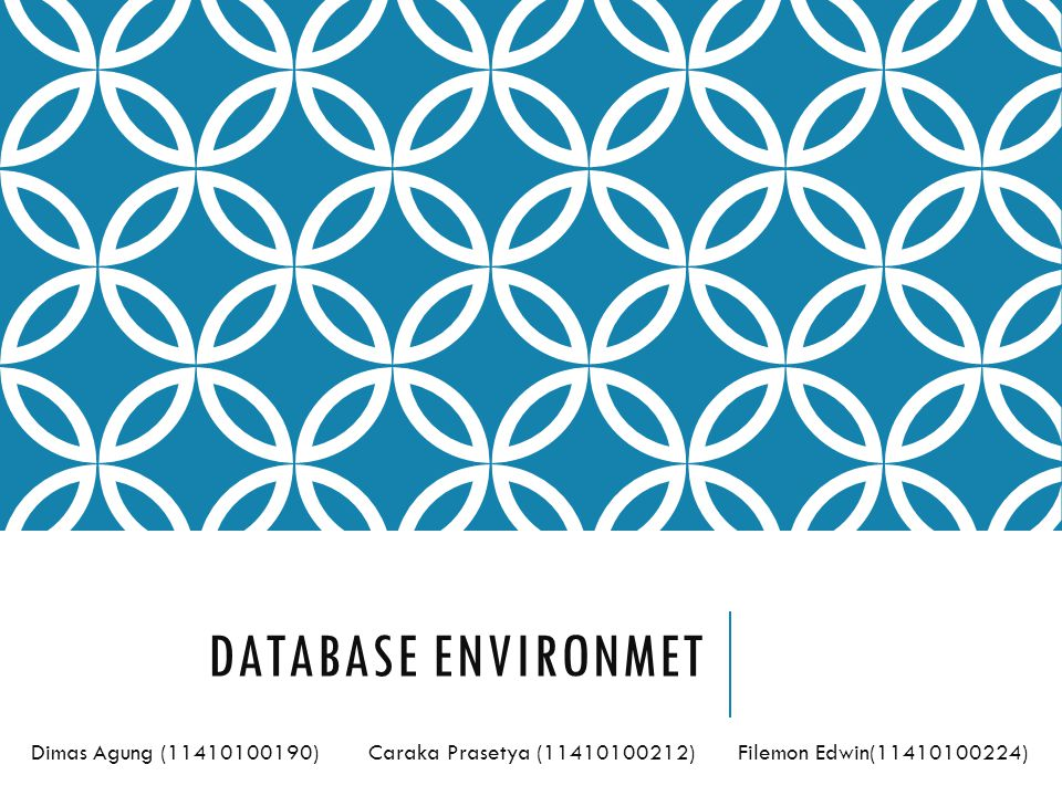 Database Environmet Dimas Agung ( ) Caraka Prasetya ( ) Filemon Edwin( )