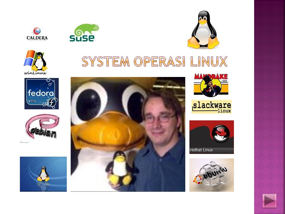 System Operasi Linux
