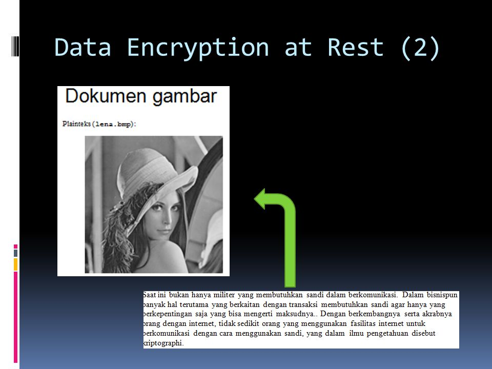 Data Encryption at Rest (2)