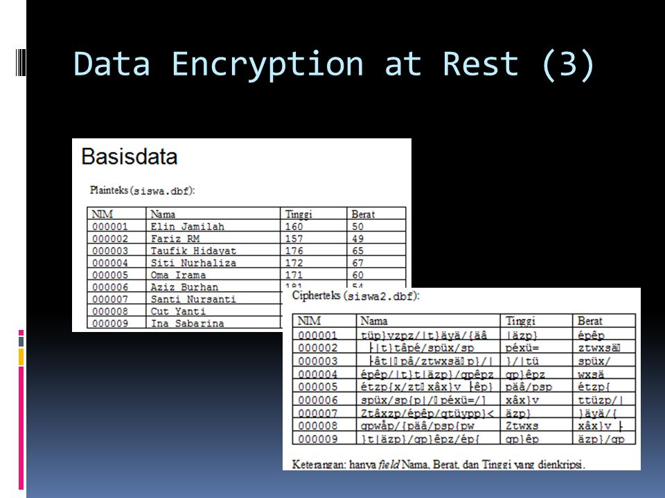 Data Encryption at Rest (3)