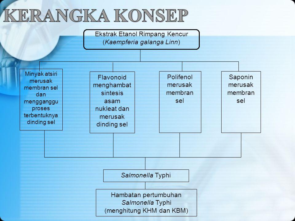 KERANGKA KONSEP Ekstrak Etanol Rimpang Kencur