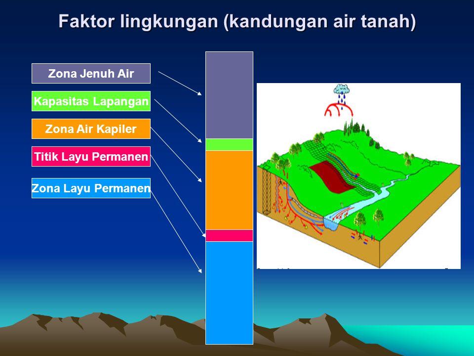 Faktor lingkungan (kandungan air tanah)