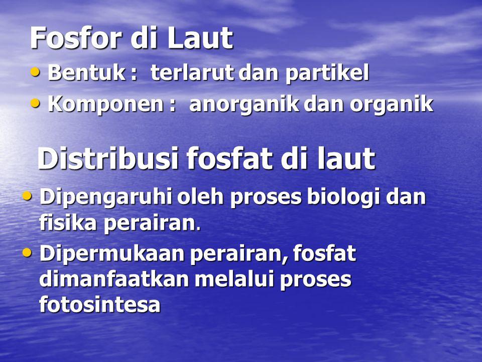 Distribusi fosfat di laut