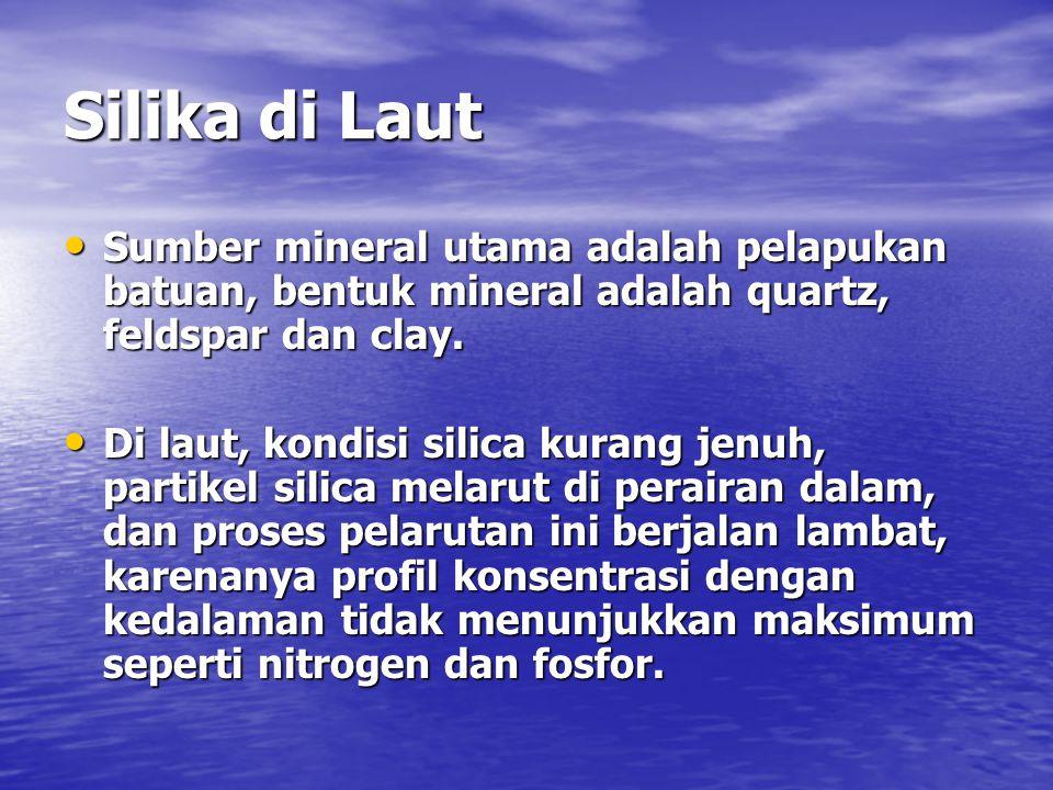 Silika di Laut Sumber mineral utama adalah pelapukan batuan, bentuk mineral adalah quartz, feldspar dan clay.