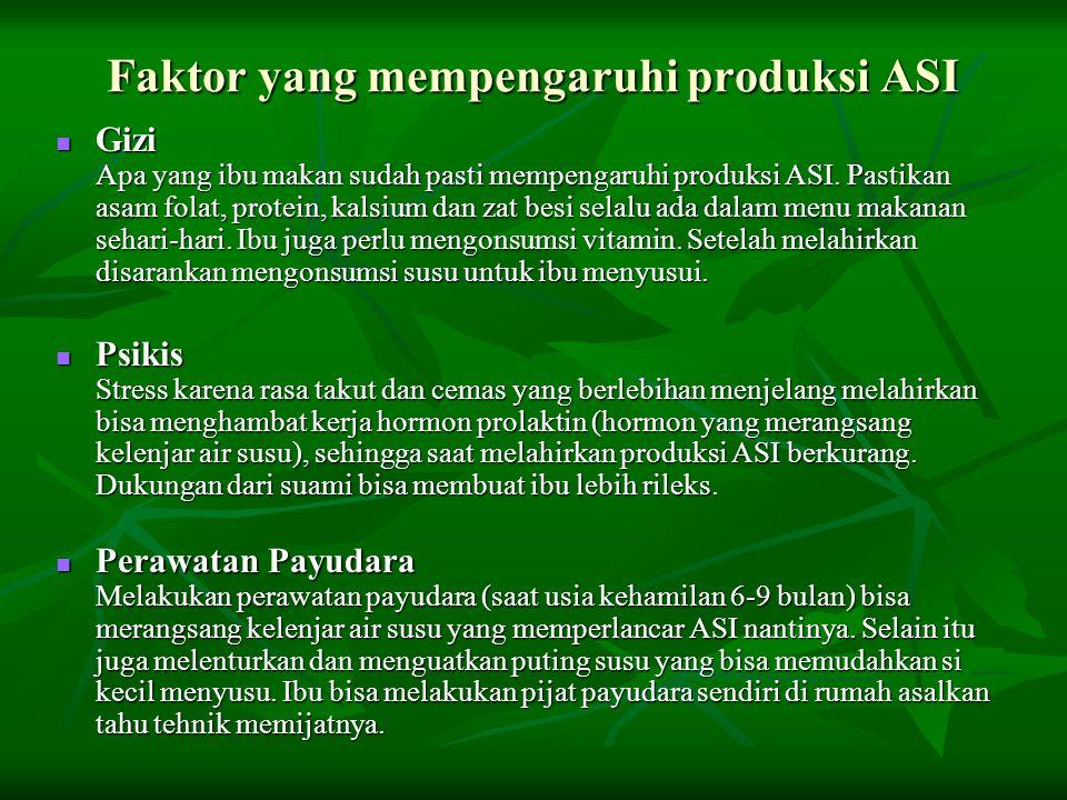 Faktor yang mempengaruhi produksi ASI