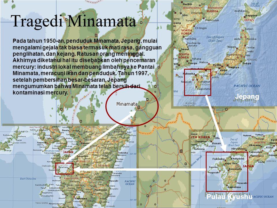 Tragedi Minamata Jepang Pulau Kyushu