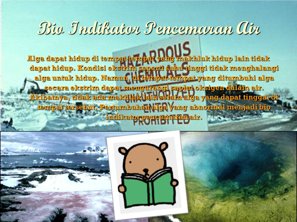 Bio Indikator Pencemaran Air
