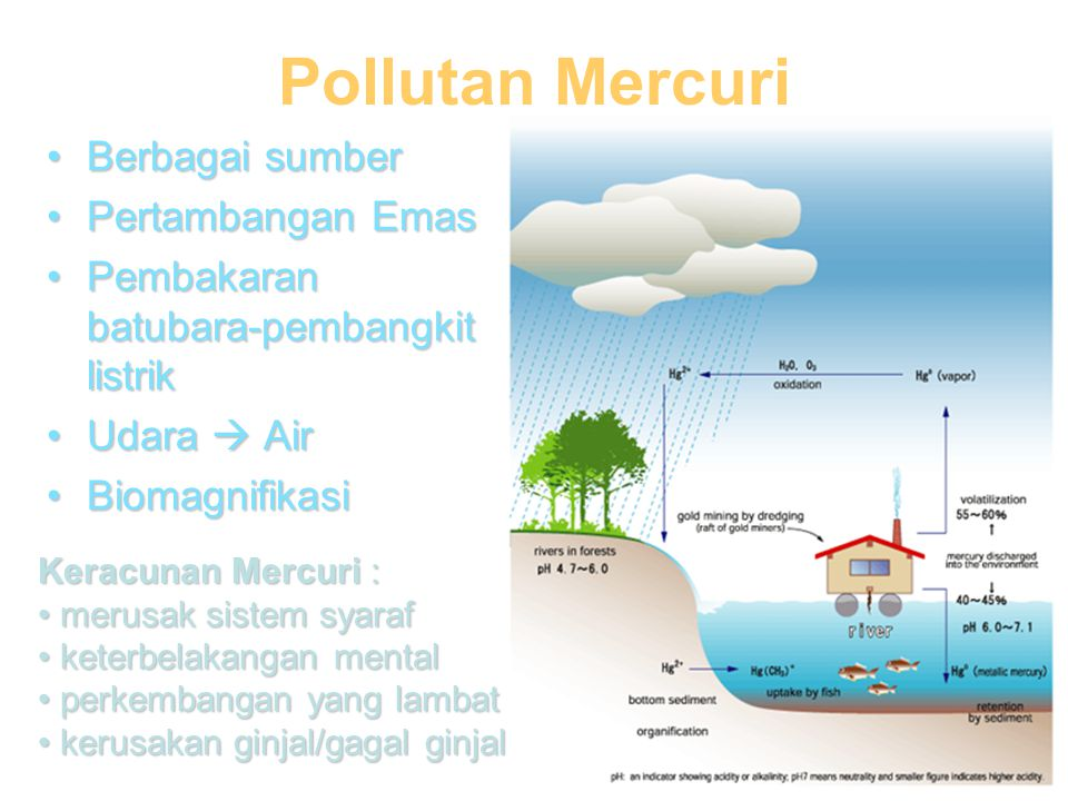 Pollutan Mercuri Berbagai sumber Pertambangan Emas