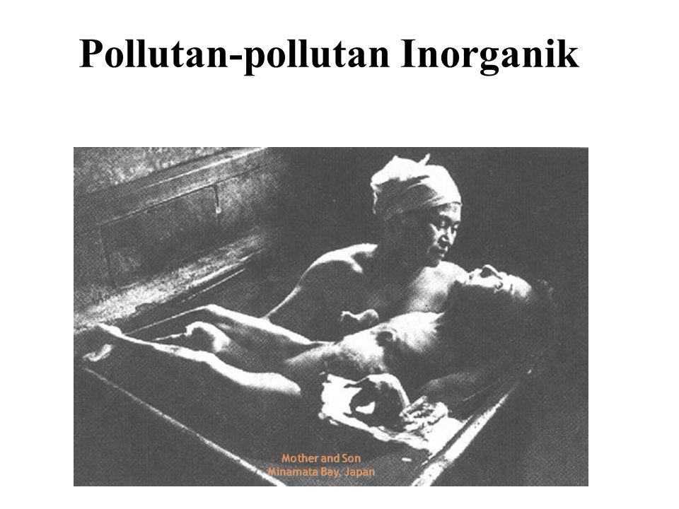 Pollutan-pollutan Inorganik
