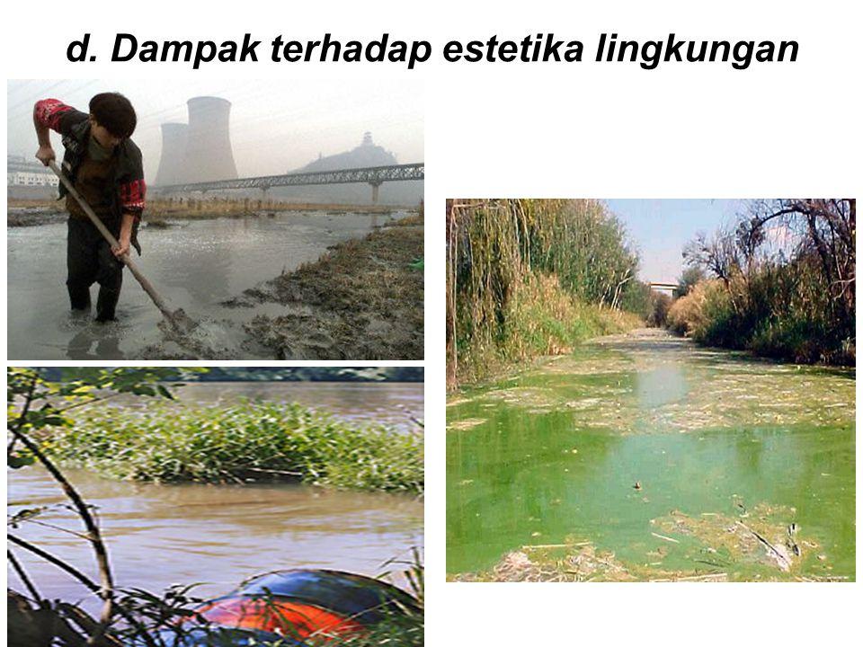 d. Dampak terhadap estetika lingkungan
