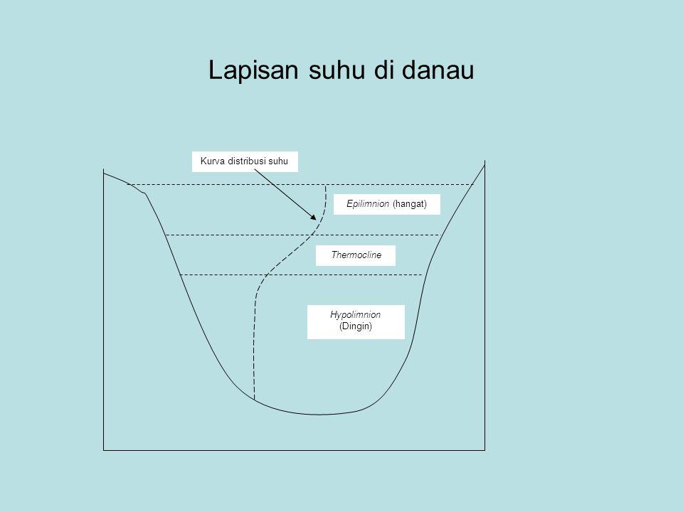 Lapisan suhu di danau Kurva distribusi suhu Epilimnion (hangat)
