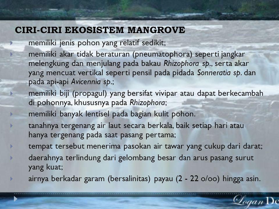CIRI-CIRI EKOSISTEM MANGROVE