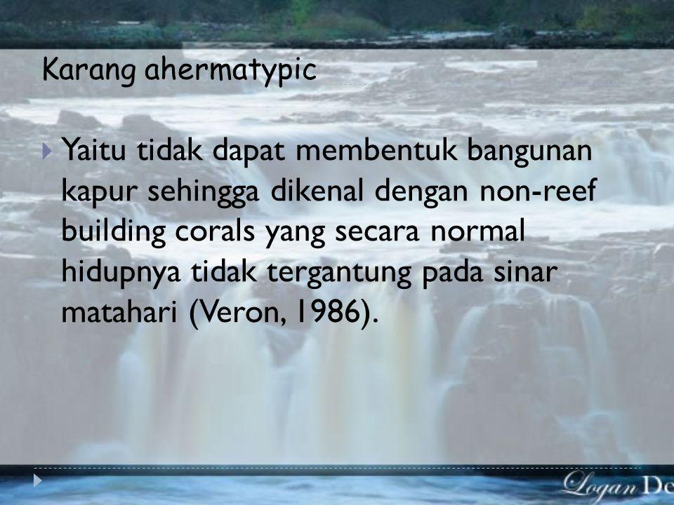 Karang ahermatypic