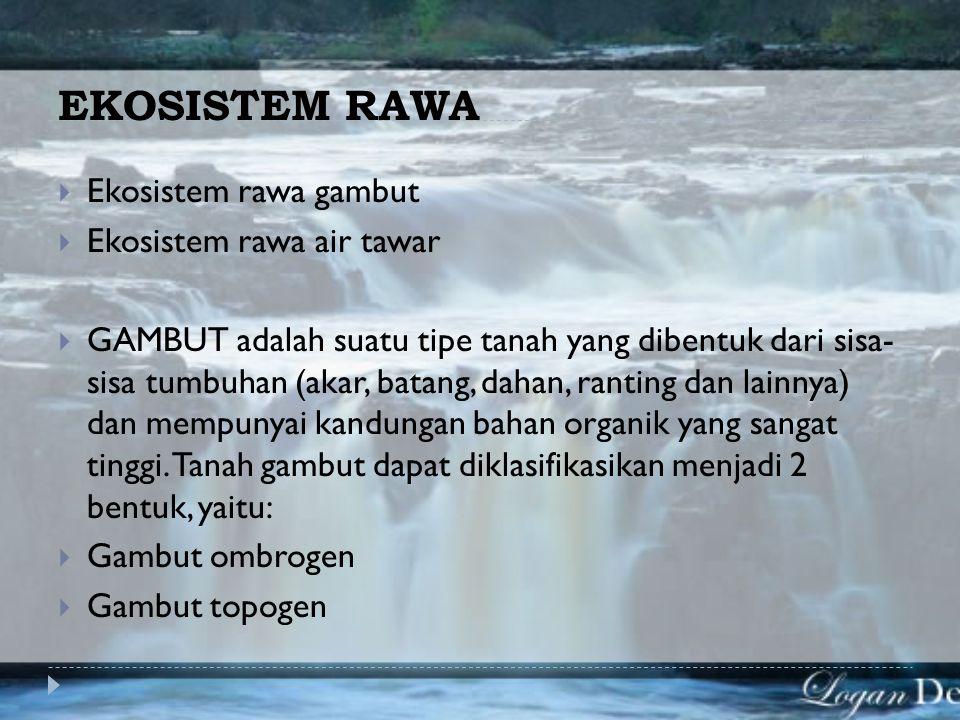 EKOSISTEM RAWA Ekosistem rawa gambut Ekosistem rawa air tawar