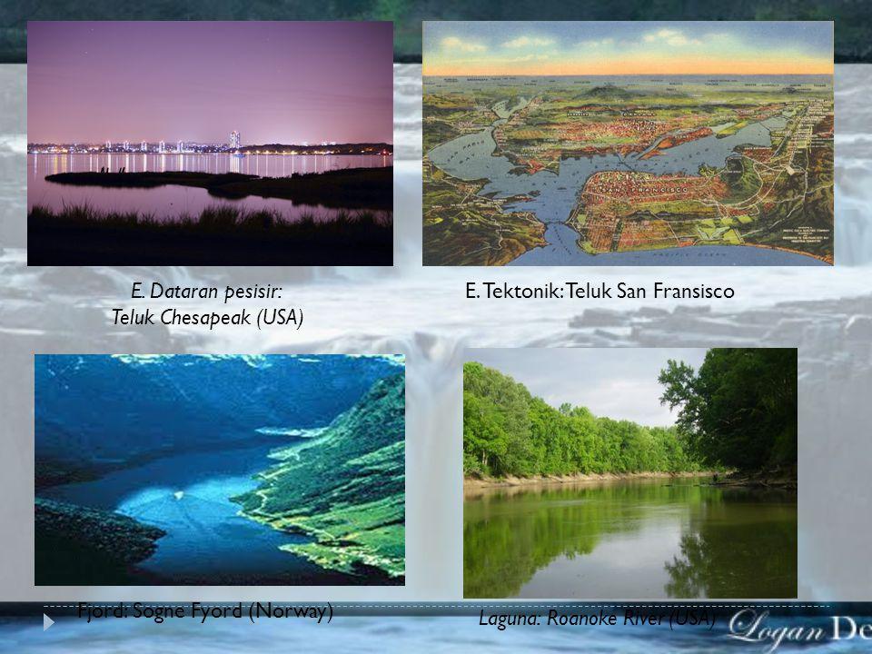 E. Dataran pesisir: Teluk Chesapeak (USA) E. Tektonik: Teluk San Fransisco. Fjord: Sogne Fyord (Norway)