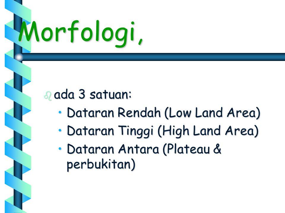 Morfologi, ada 3 satuan: Dataran Rendah (Low Land Area)