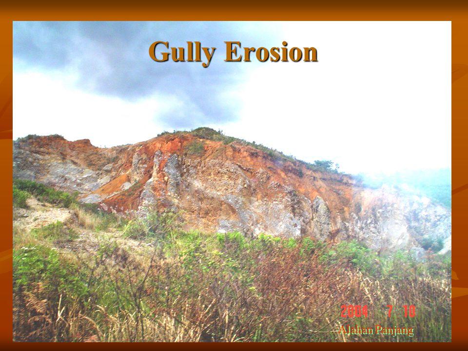 Gully Erosion Alahan Panjang
