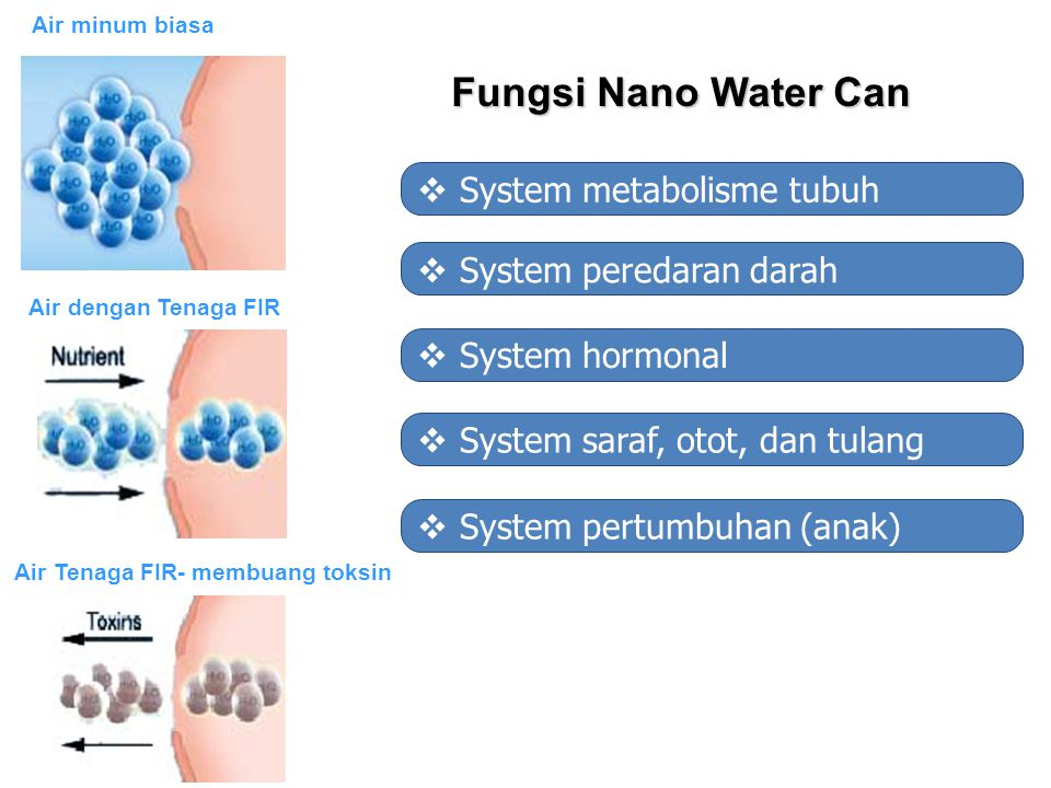 Fungsi Nano Water Can System metabolisme tubuh System peredaran darah