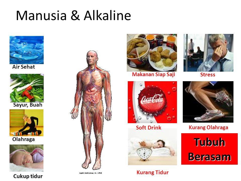 Manusia & Alkaline Tubuh Berasam Air Sehat Stress Sayur, Buah