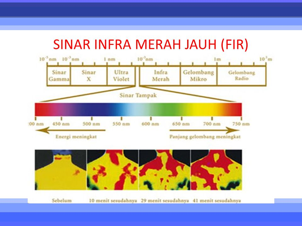 SINAR INFRA MERAH JAUH (FIR)