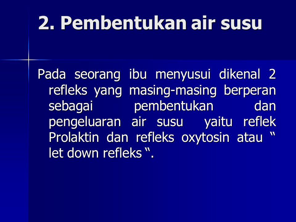 2. Pembentukan air susu