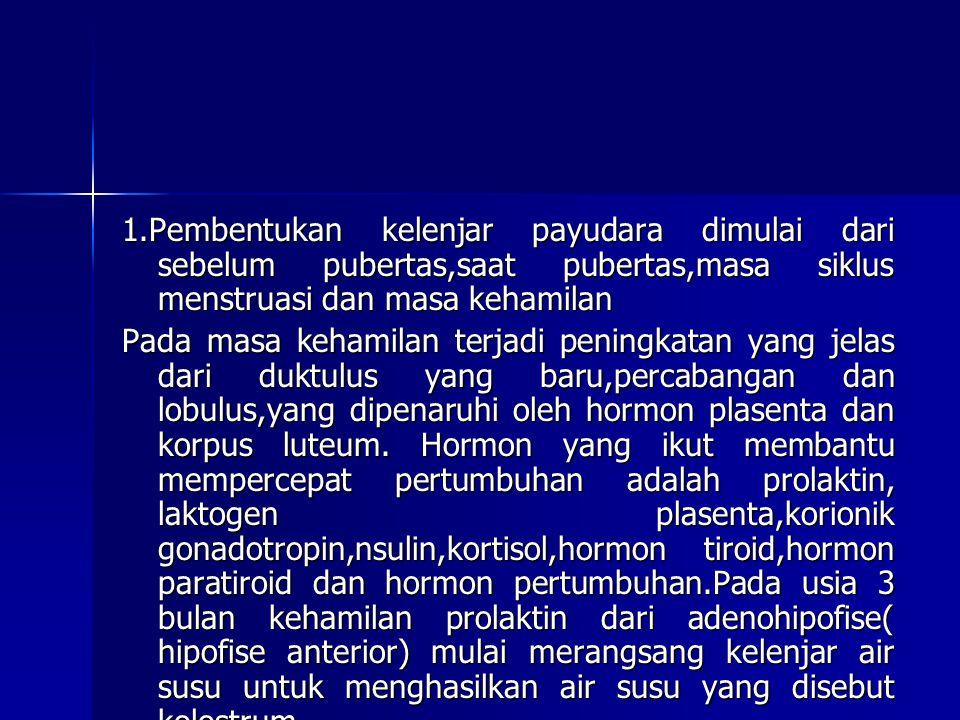 1.Pembentukan kelenjar payudara dimulai dari sebelum pubertas,saat pubertas,masa siklus menstruasi dan masa kehamilan