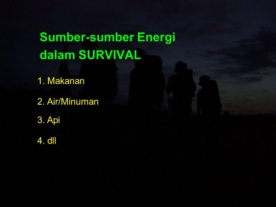 Sumber-sumber Energi dalam SURVIVAL