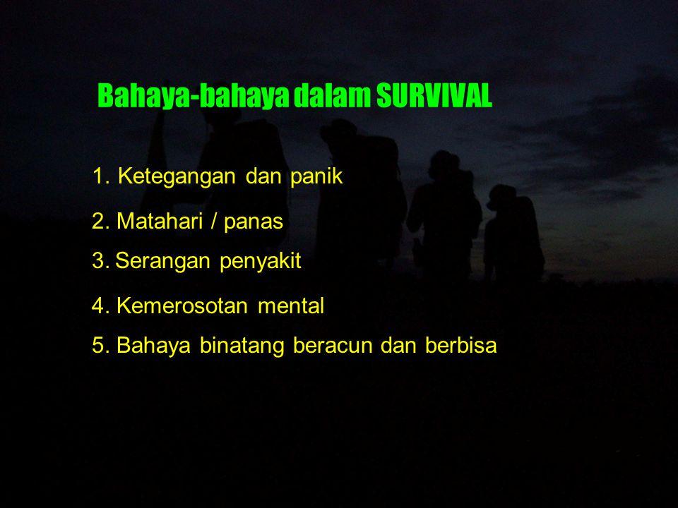 Bahaya-bahaya dalam SURVIVAL