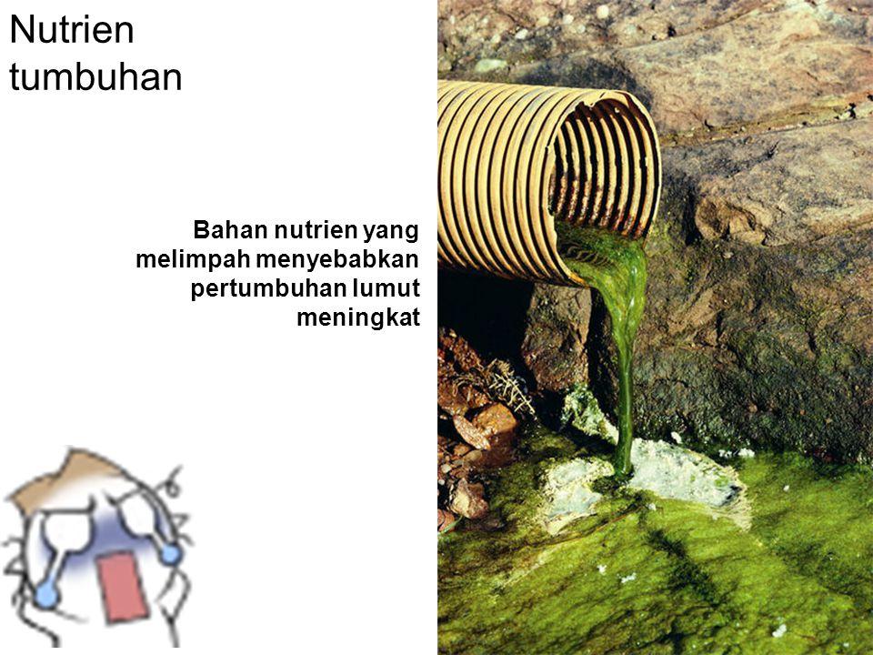 Nutrien tumbuhan Bahan nutrien yang melimpah menyebabkan pertumbuhan lumut meningkat