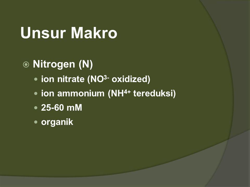 Unsur Makro Nitrogen (N) ion nitrate (NO3- oxidized)