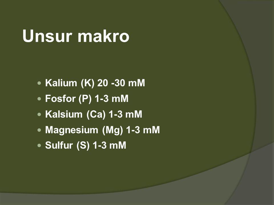 Unsur makro Kalium (K) 20 -30 mM Fosfor (P) 1-3 mM Kalsium (Ca) 1-3 mM