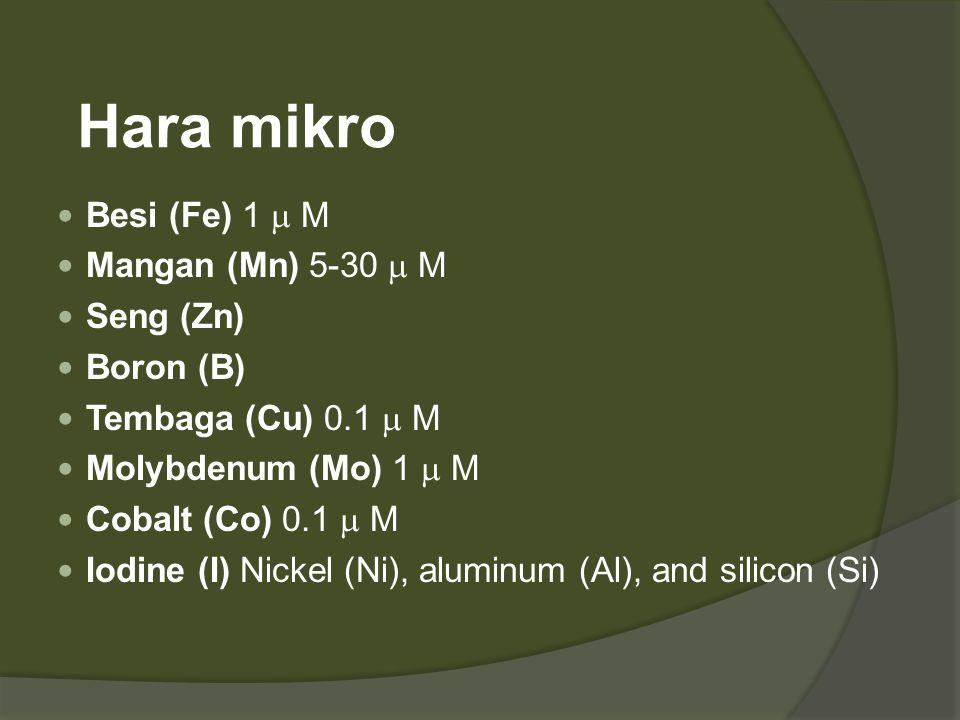Hara mikro Besi (Fe) 1 m M Mangan (Mn) 5-30 m M Seng (Zn) Boron (B)