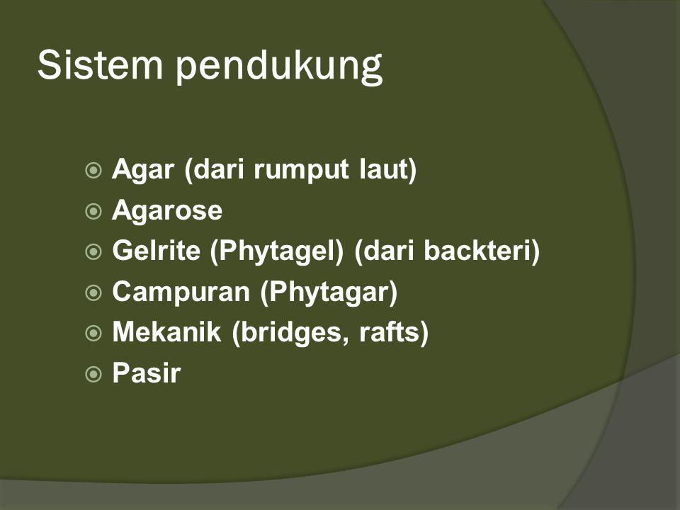 Sistem pendukung Agar (dari rumput laut) Agarose