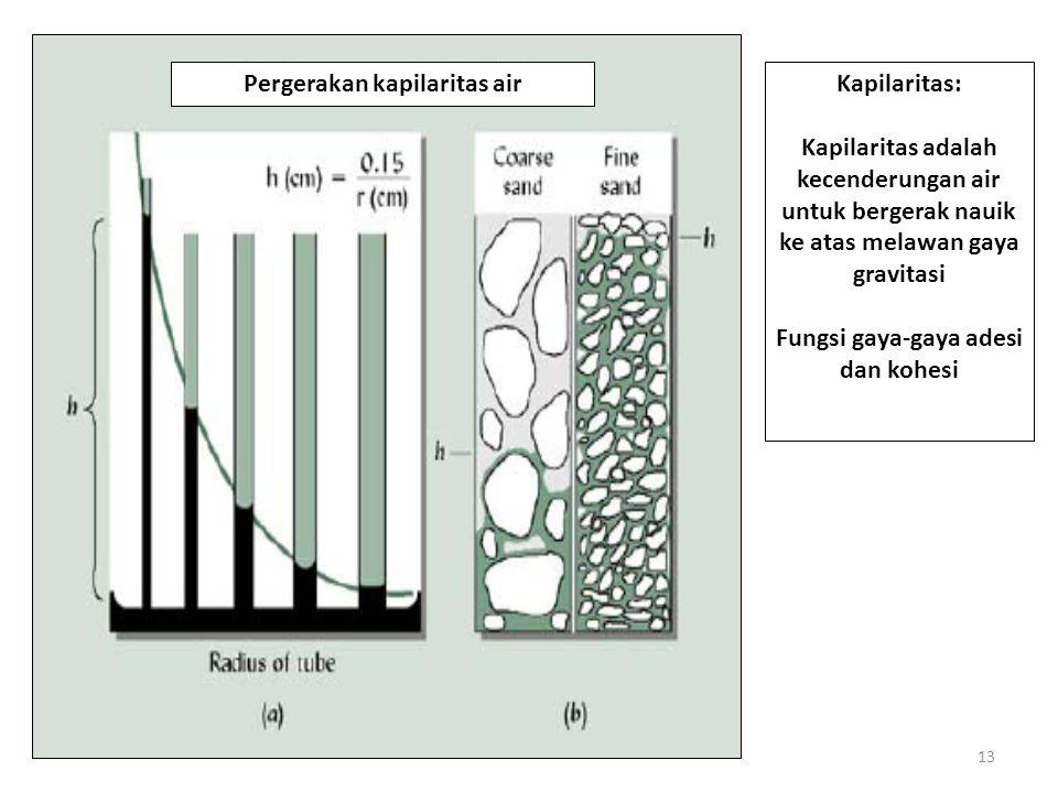 Pergerakan kapilaritas air Fungsi gaya-gaya adesi dan kohesi