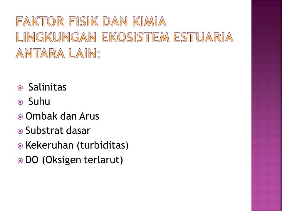 faktor fisik dan kimia lingkungan ekosistem estuaria antara lain: