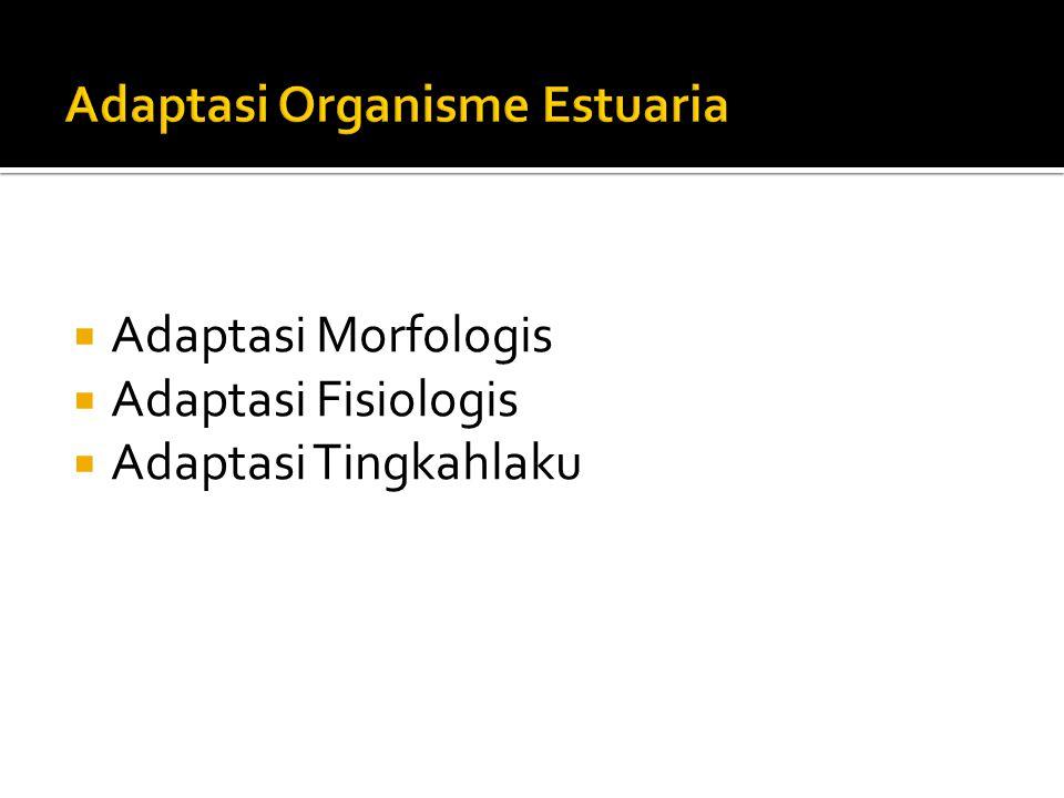 Adaptasi Organisme Estuaria